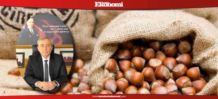 Giresun fındığı çikolata üreticilerine sunulacak