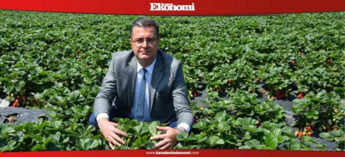 ''Modern bahçeler üreticilerimize yol gösterecek''