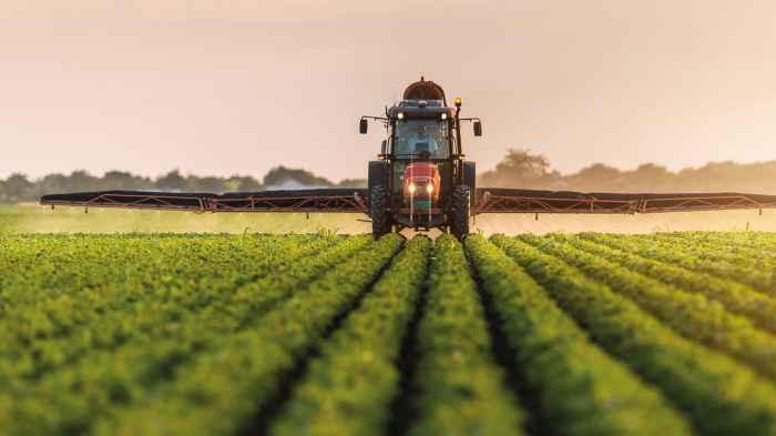 Tarımsal ürünlerin üretim miktarları tahmin edildi