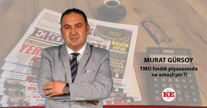 TMO fındık piyasasında ne amaçlıyor?